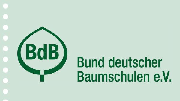 BdB_teaser